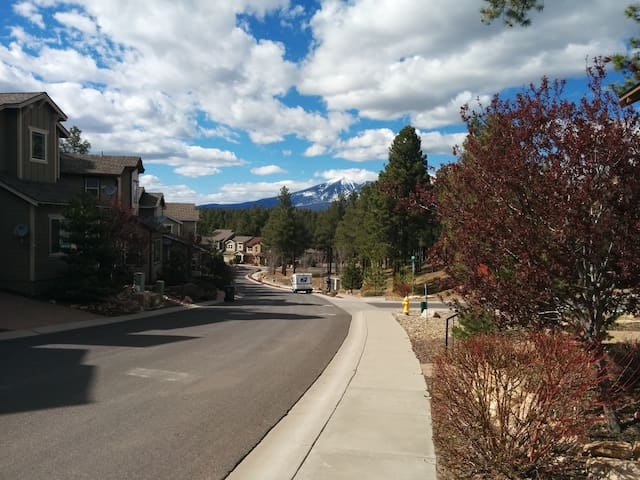 A unique experience in Flagstaff