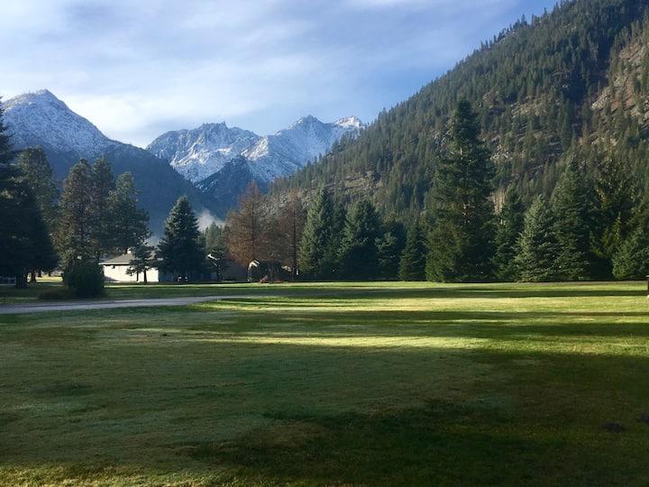 Modern, hip house near town; mountain views, trees