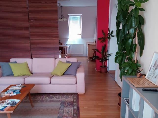 Attic Apartment
