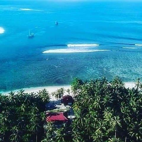 Hollow Tree's Manalu Surf Camp