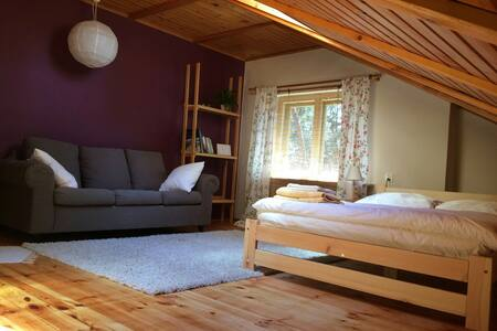 Plum room for rent in private house