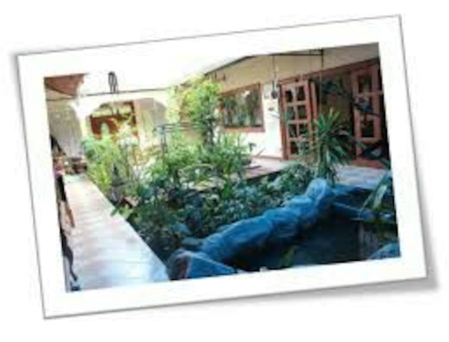 Internal garden with retractable roof & a mini fish pool with beautiful waterfall IF it rains..