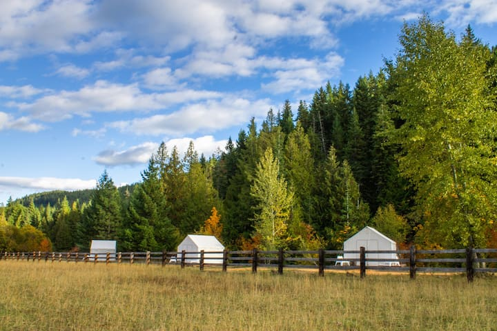 Glamping at Cave Creek Farm - Mt. Hood Tent