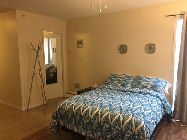 Nicest Studio Apt to stay in Edmonton - Edmonton - Appartement