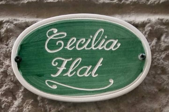 Welcome to Cecilia Flat!