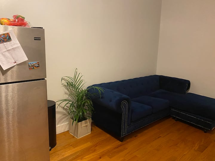 Clean and cozy living room space in Bedstuy