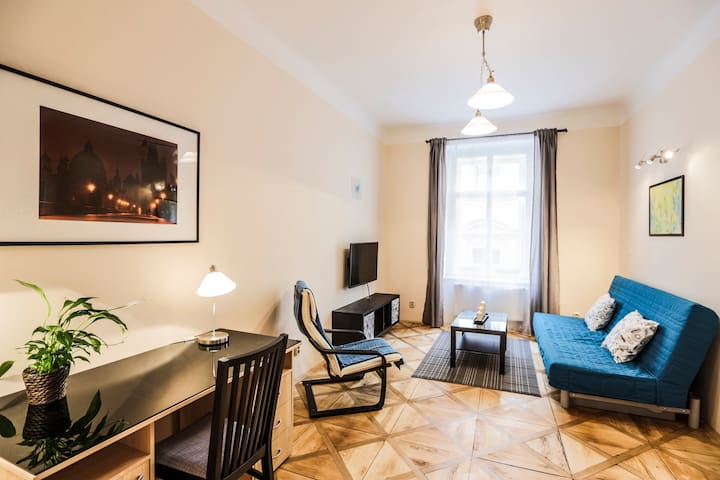 Cozy, new flat 8 in the heart of Prague, free wifi