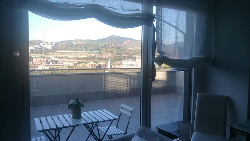 Bilbao desde el aire - Bilbao - Flat