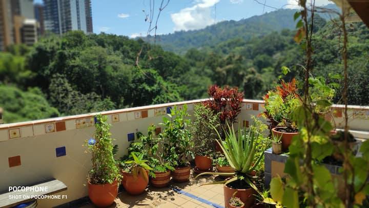 Green view in the heart of Bucaramanga