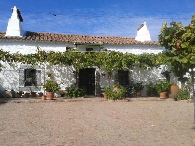 Cortijo El Mohedano Main House - Villanueva de Córdoba