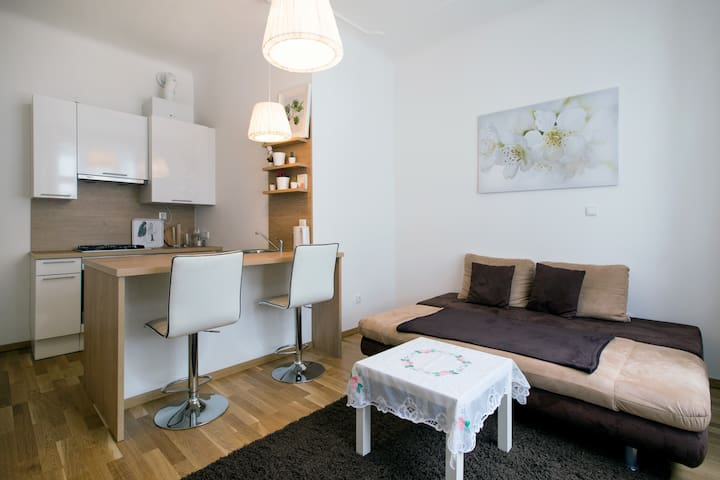 Apartment in the heart of Vienna (Stephansplatz) - Vienna - Lejlighed