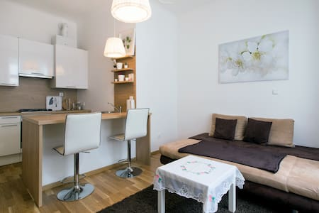 Apartment in the heart of Vienna (Stephansplatz) - Wien - Flat
