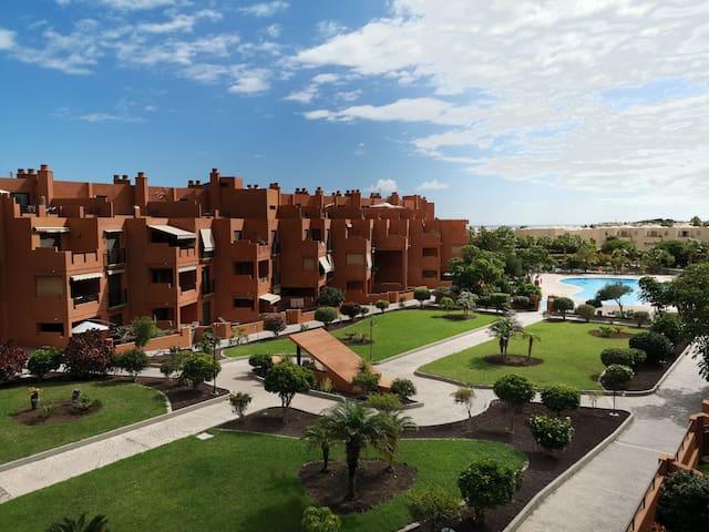 Apartment with 1 bedroom in La Tejita (El Medano)