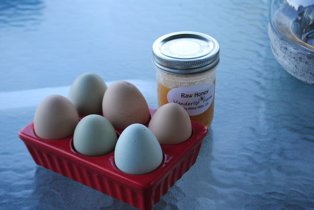 We daily harvest eggs from our farm and you can enjoy local honey too.