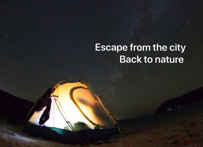 沙滩露营 - 追星回归初心