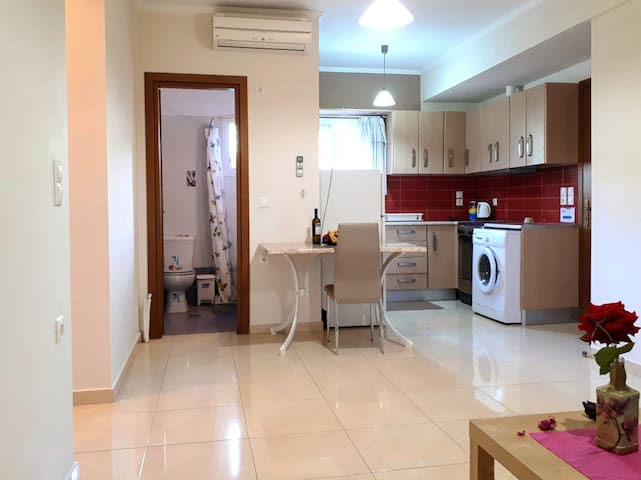 Despina's apartment located in Nidri (Nydri)-kitchen & bathroom 1