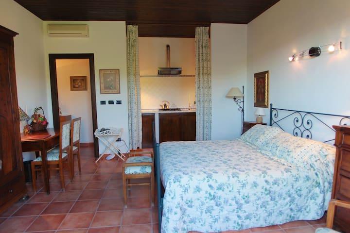 Junior Suite, La Maragliana, Monferrato, Unesco - Castel Rocchero - Mobilyalı daire