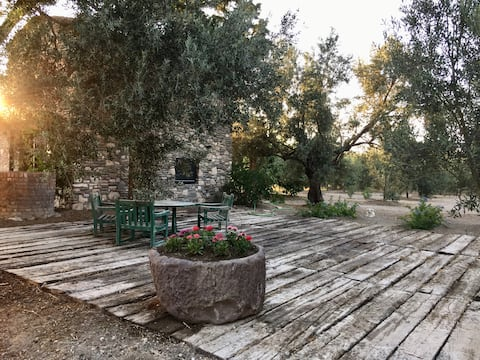 Cosy Stone House on a Peaceful Olive Orchard