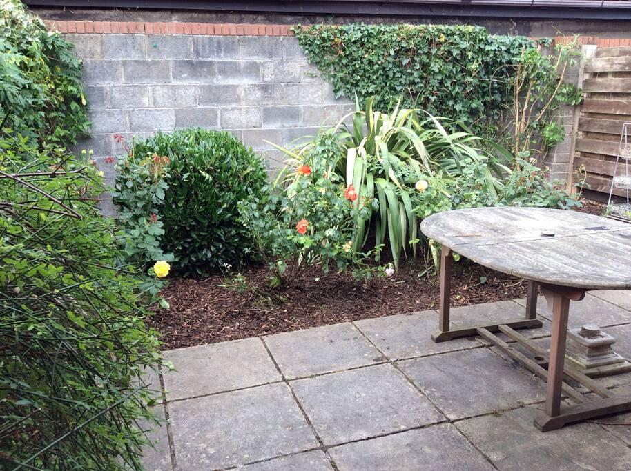 Bijou rear garden,