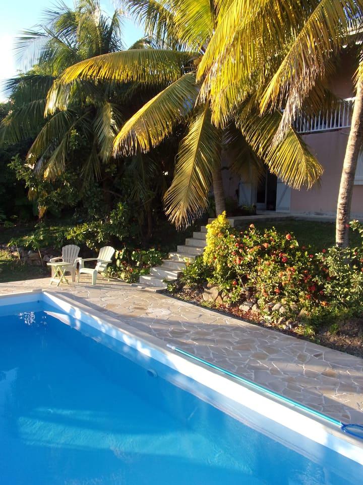 Côte Caraïbe : F2 dans villa avec piscine et vue