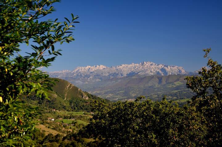 Estancia en caserío de Asturias, farm holidays