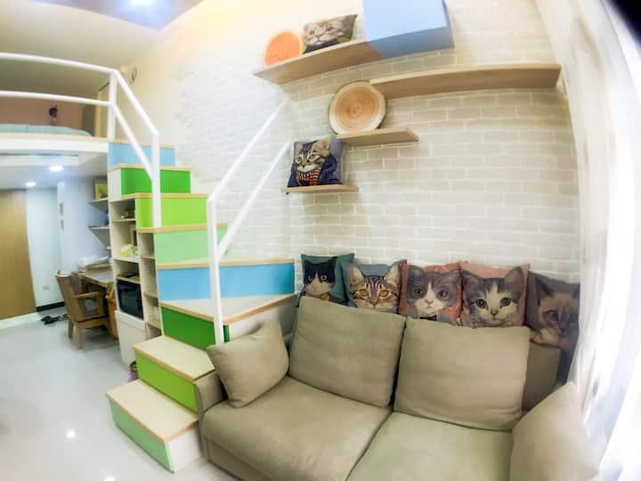Central Taipei city MRT cozycat apartment
