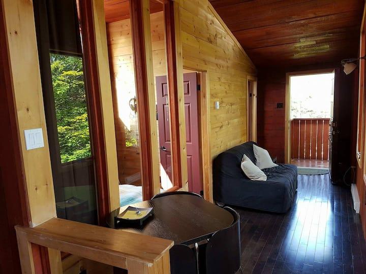 Duplex in Luxurious Chalet - Saint Sauveur
