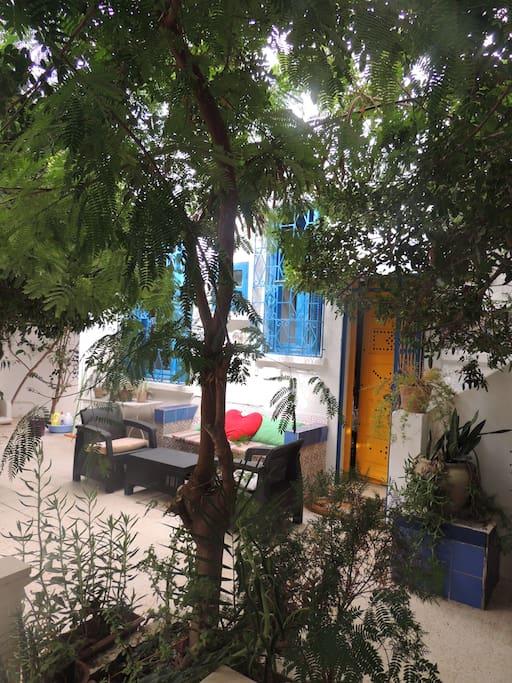 ambiance décontraction couleurs végétation dans le jardin