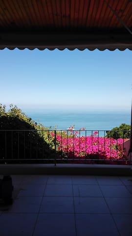 The view from the bedroom door