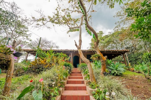 Ecological colonial estate - guadual light