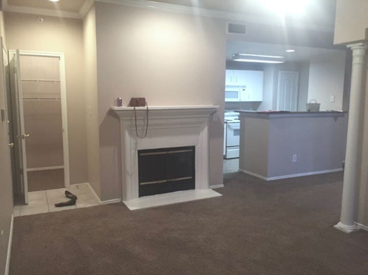 Large, Comfy 1BR Apartment in South Austin