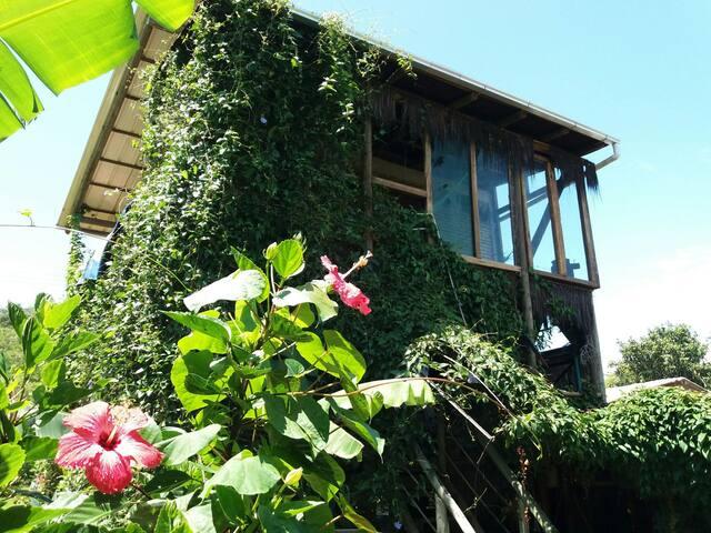 Rafa_Eco_Guesthouse,vista linda,5min Beto Carreiro