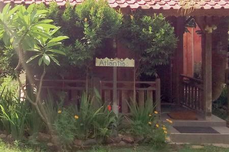Gypsea Yoga Eco Retreat - Atlantis