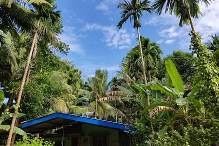 JD Home Stay - Full Cottage