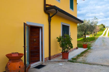 Holiday House Surrounded by Olive Trees - Montecatini Terme