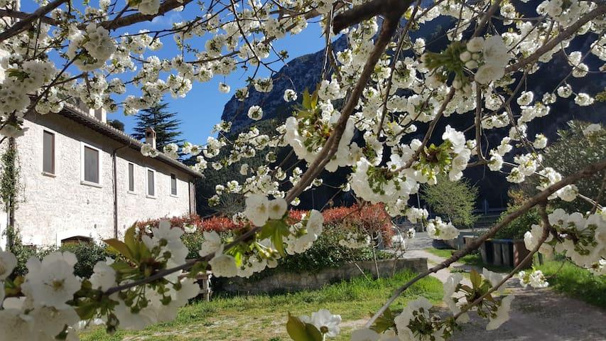 """Casa Vacanza I Terzieri: """"Appartamento Borsino - Ferentillo - Holiday home"""