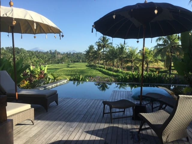 LUSH and ROMANTIC HIDEAWAY  in UBUD area