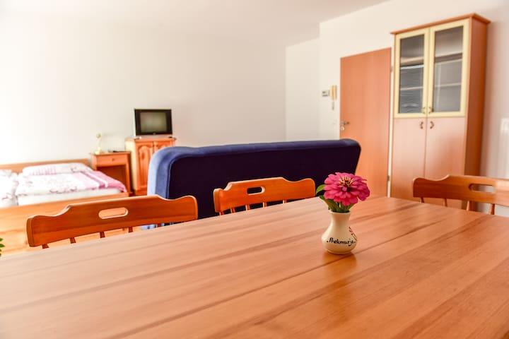 Apartment 15 - Moravske Toplice - Appartement