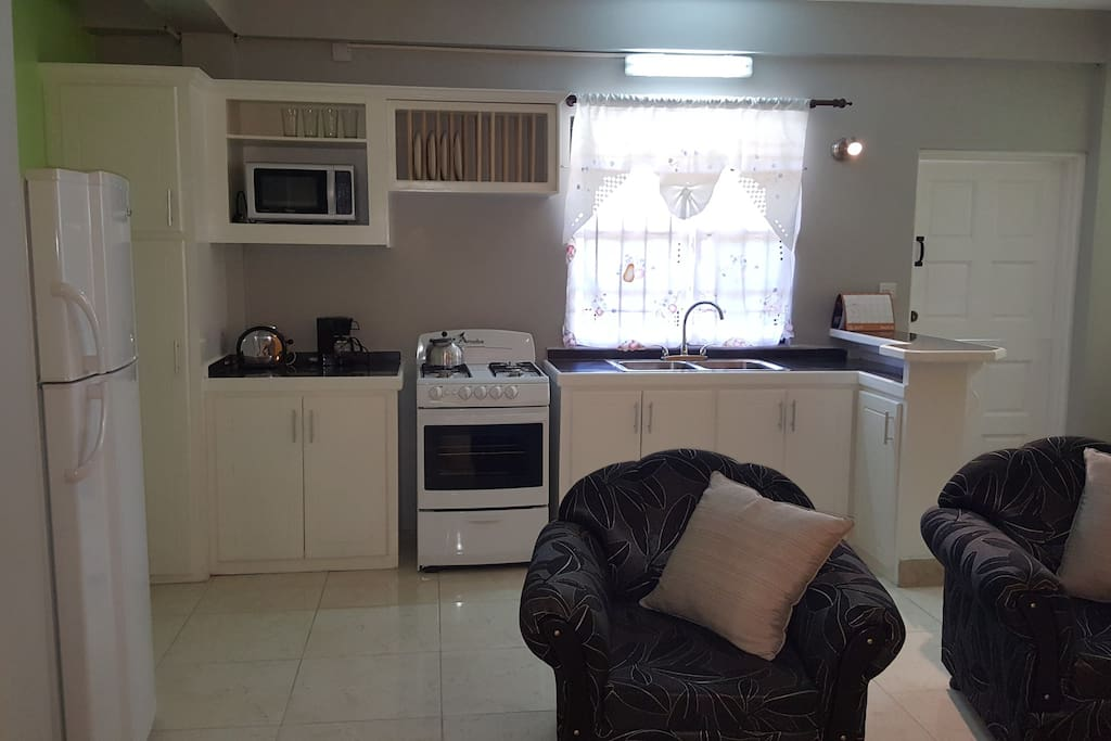 Modern kitchen, fully equipped with brand new appliances