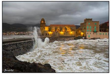Les fêtes de fin d'année à collioure - Collioure