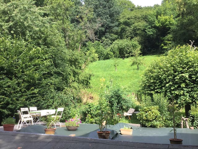 Feines Zimmer mit Dachschräge - Marburg - Hus