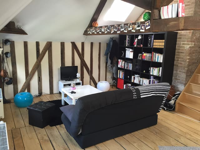 Appartement 2 pièces centre ville - Troyes - อพาร์ทเมนท์