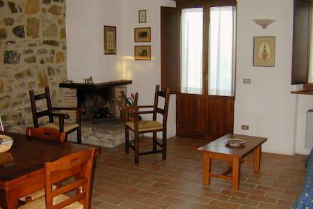 Agriturismo Borgo Casaglia - La Lavanda - San Venanzo - Apartment
