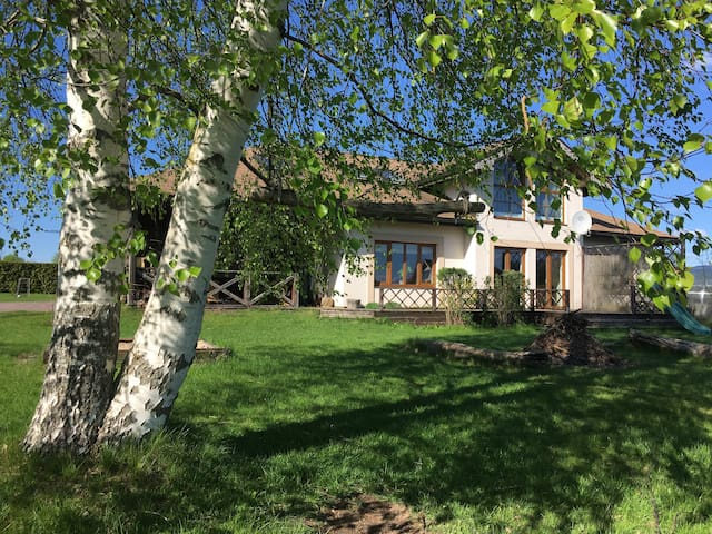 Big birch tress create a nice shadow on one side of the garden. There is an outside fireplace and a small slide too.