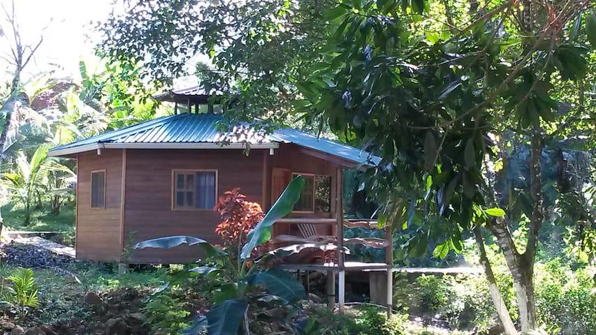 Termas Jilamito River View Cabin
