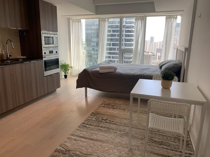 Luxury Bachelor Suite Downtown Toronto