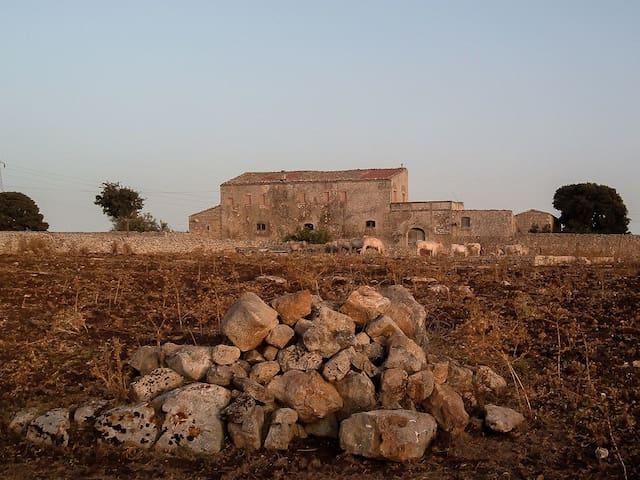 "Discovering Val di Noto: the peaceful countryside with ancient ""masserie"" and dry-stone walls"