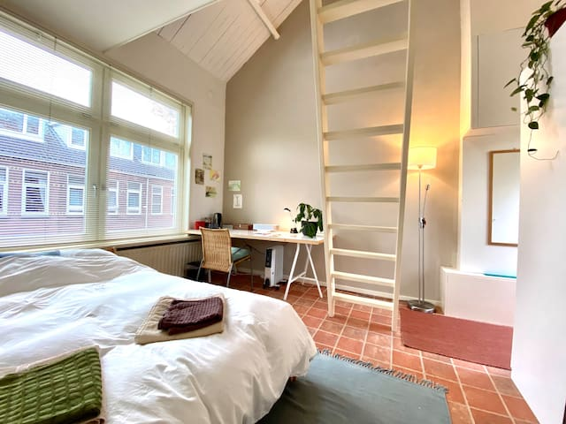 Spacious Room in a Historical House & Free Bike