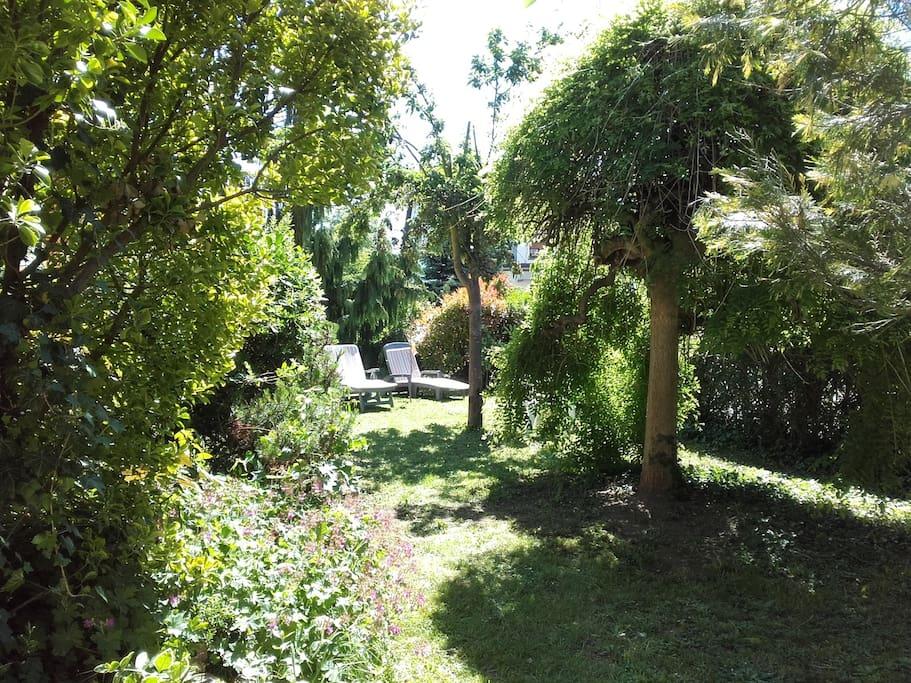 le verger et son jardin