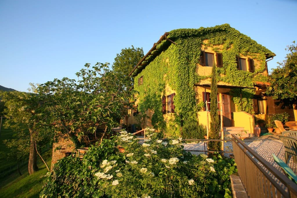 Le Due Volpi - Country house in Tuscany